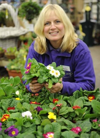 Garden centre PR photography